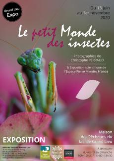 affiche expo insectes